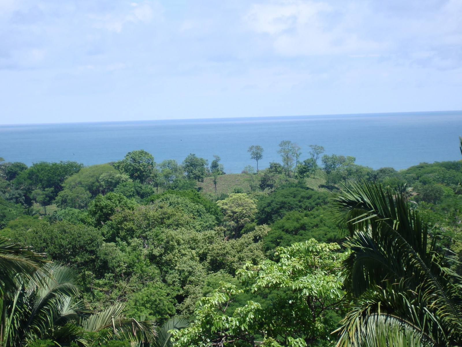 //costaricasol.com/images/jux_real_estate/realties/30/img743_4YQWZB.jpg